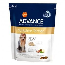 AFFINITY ADVANCE YORKSHIRE ADUTL + 8 MESES 400 G